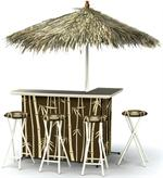 Tropical Tiki Deluxe Portable Tailgate Bar Set